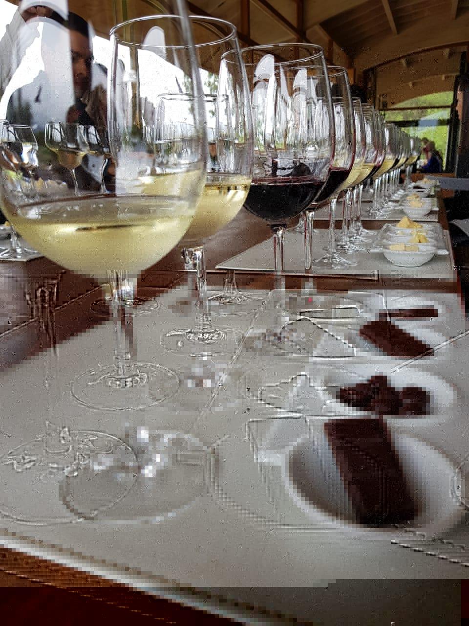 Vinícola Emiliana no Chile com degustações de vinhos