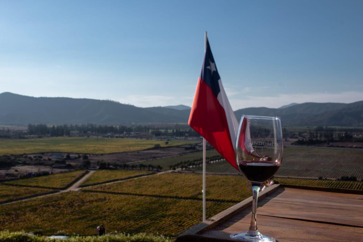 Vinícola indomita em passeio de verão em Santiago do Chile