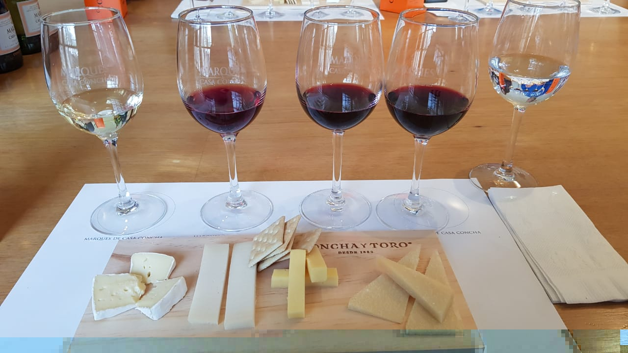 4 degustações de vinhos premium feitas na sala de degustação especial