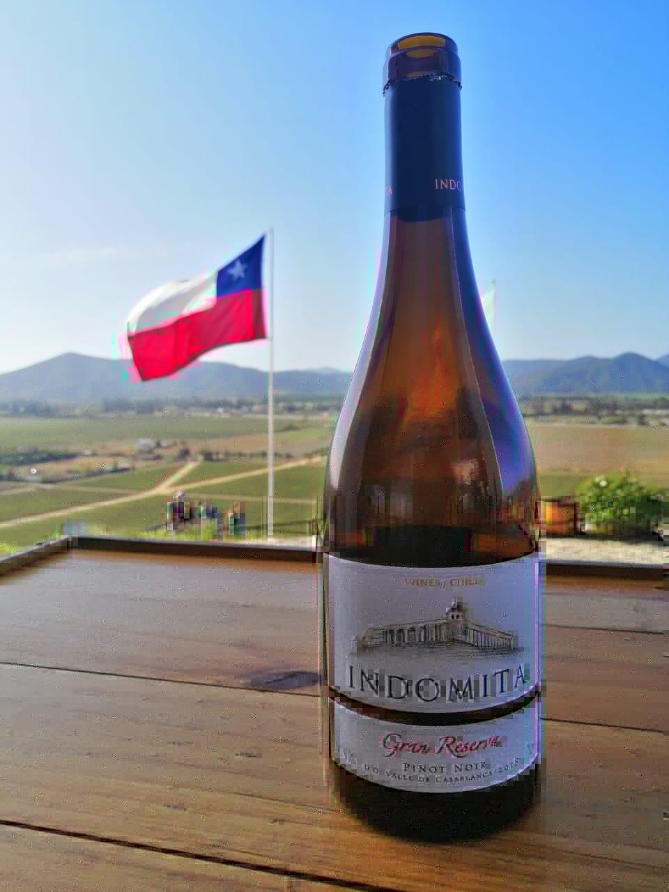 Comprar vinho em Santiago do Chile