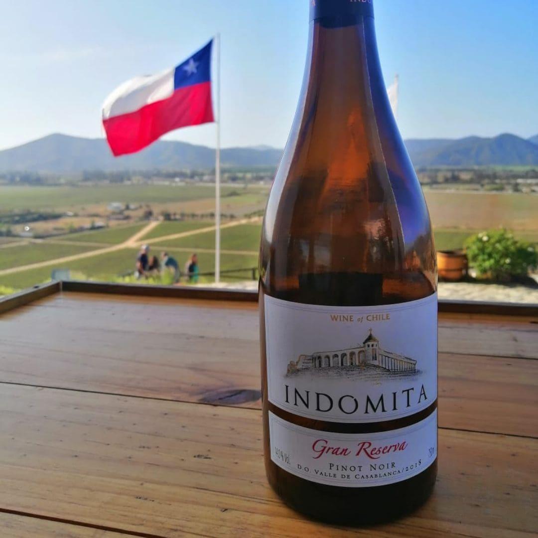Onde Comprar Vinhos Em Santiago Do Chile?