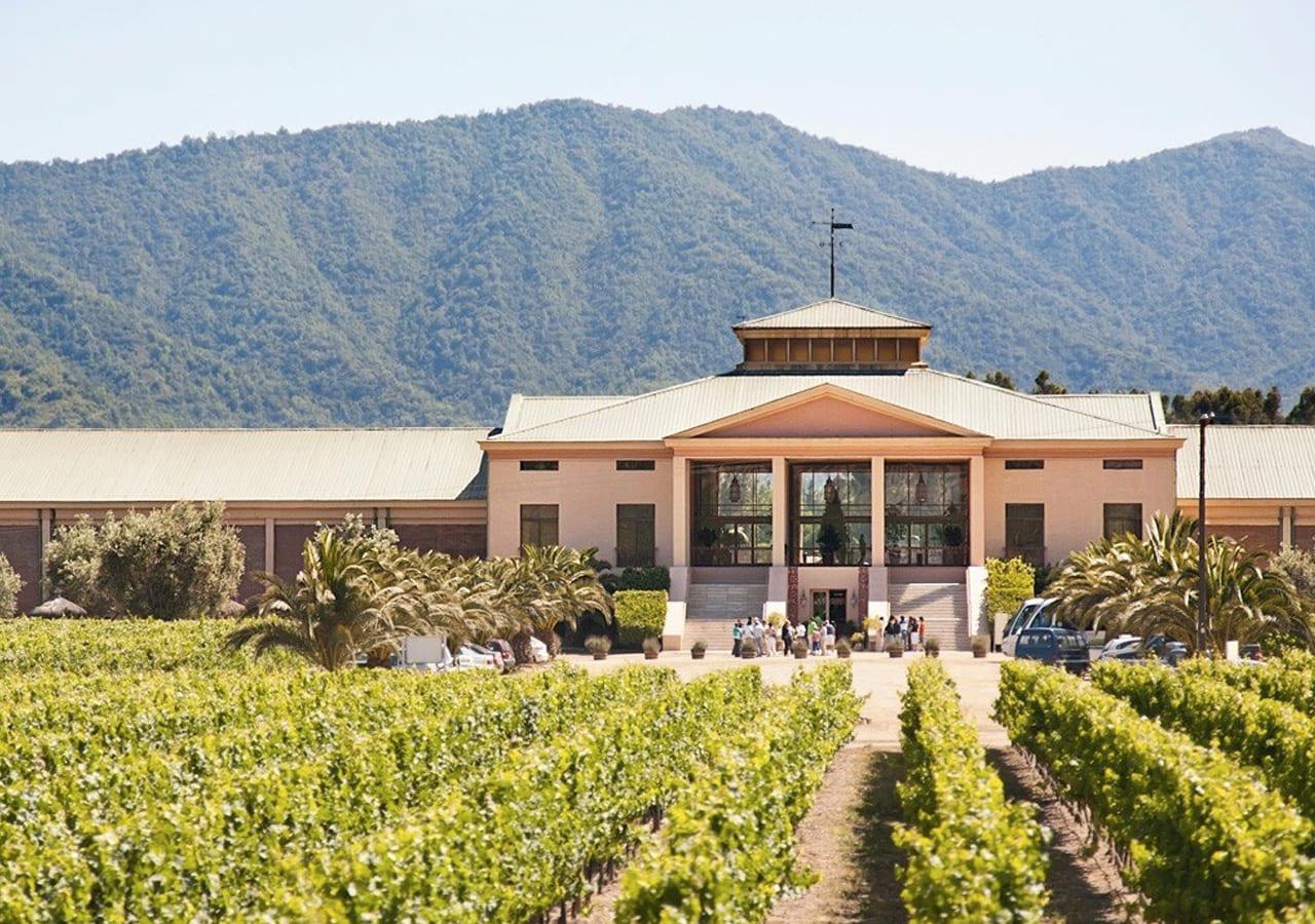 Full Wine Tour